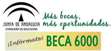 resolucion-becas-6000-2012-2013